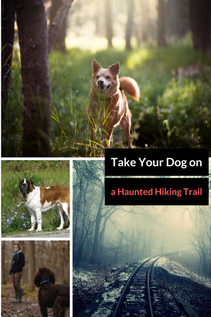 Take your dog on a haunted hiking trail