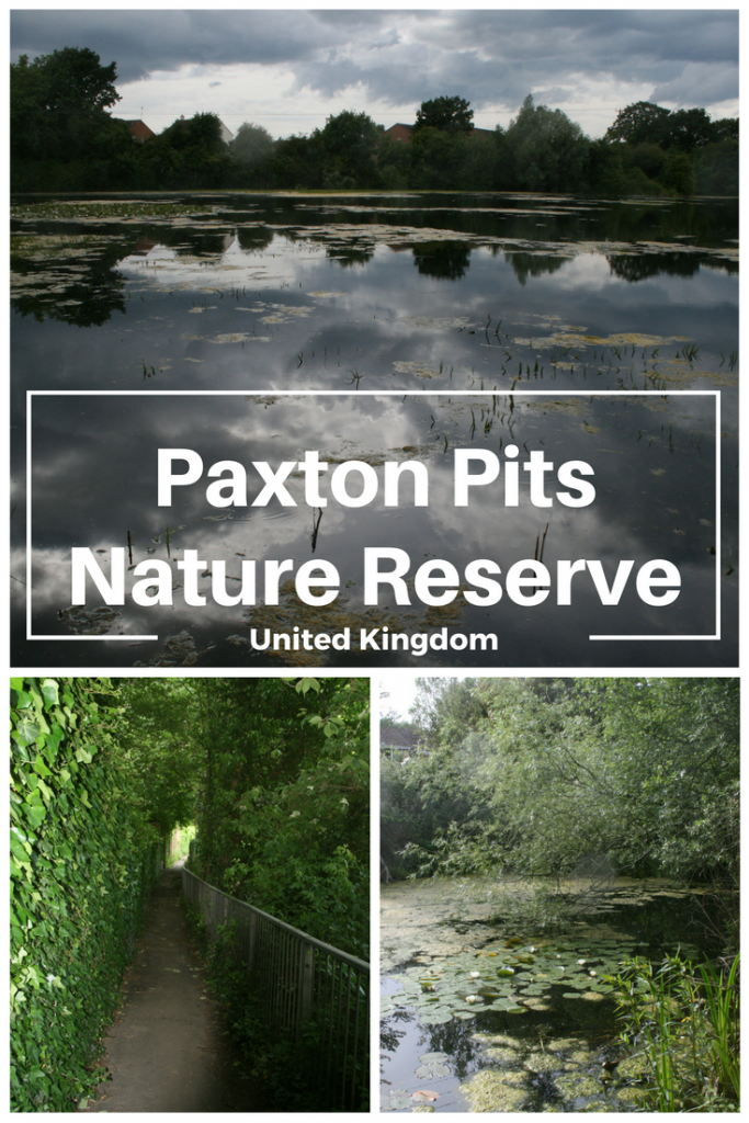 Paxton Pits Nature Reserve, United Kingdom. The Mosquitoes Drove Me Out!