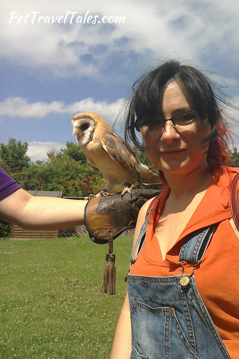 Tropical Wings Owl and Me