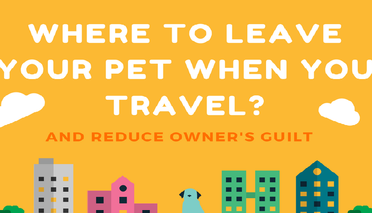 Where to Leave Your Pets When Traveling