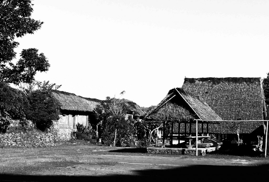 Tenganan A Truly Balinese Countryside