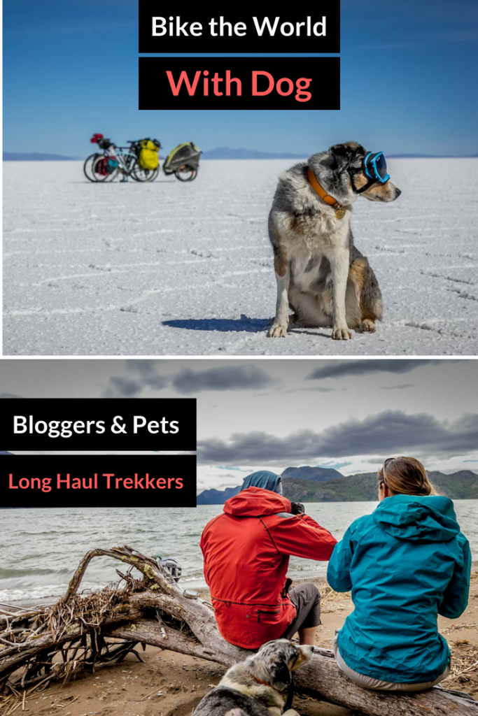 Biking the World with Dog in Tow - Pet Travel Ideas from Long Haul Trekkers