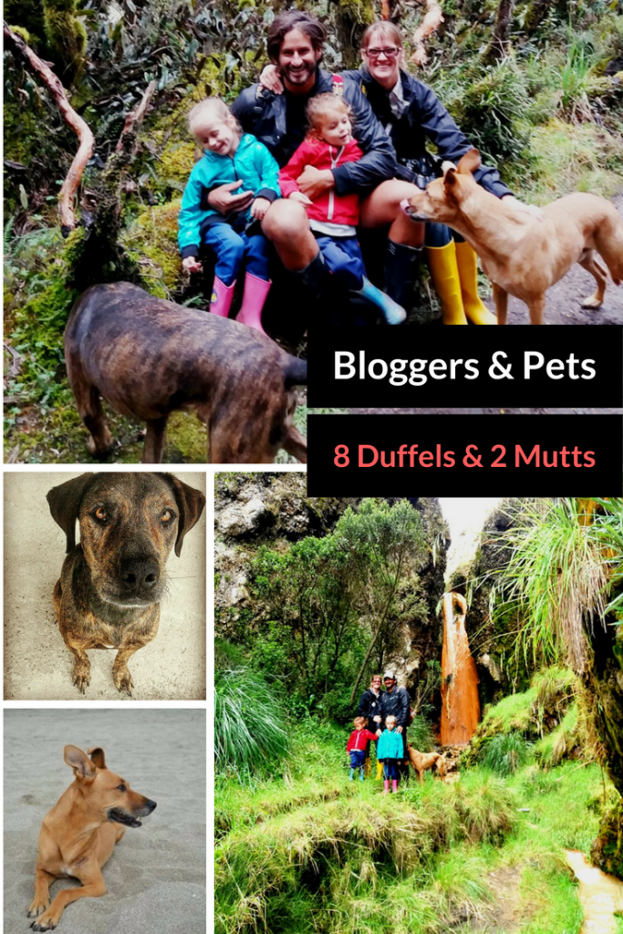 Pet Travel Blogger Profile: Meet a Nomad Family With Two Kids and Two Dogs