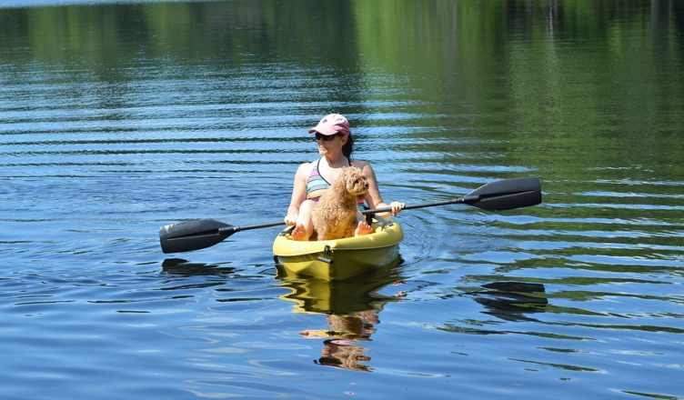 Dog-friendly Ontario Travel